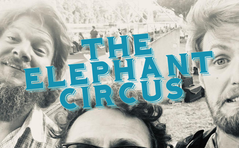 the-elephant-circus